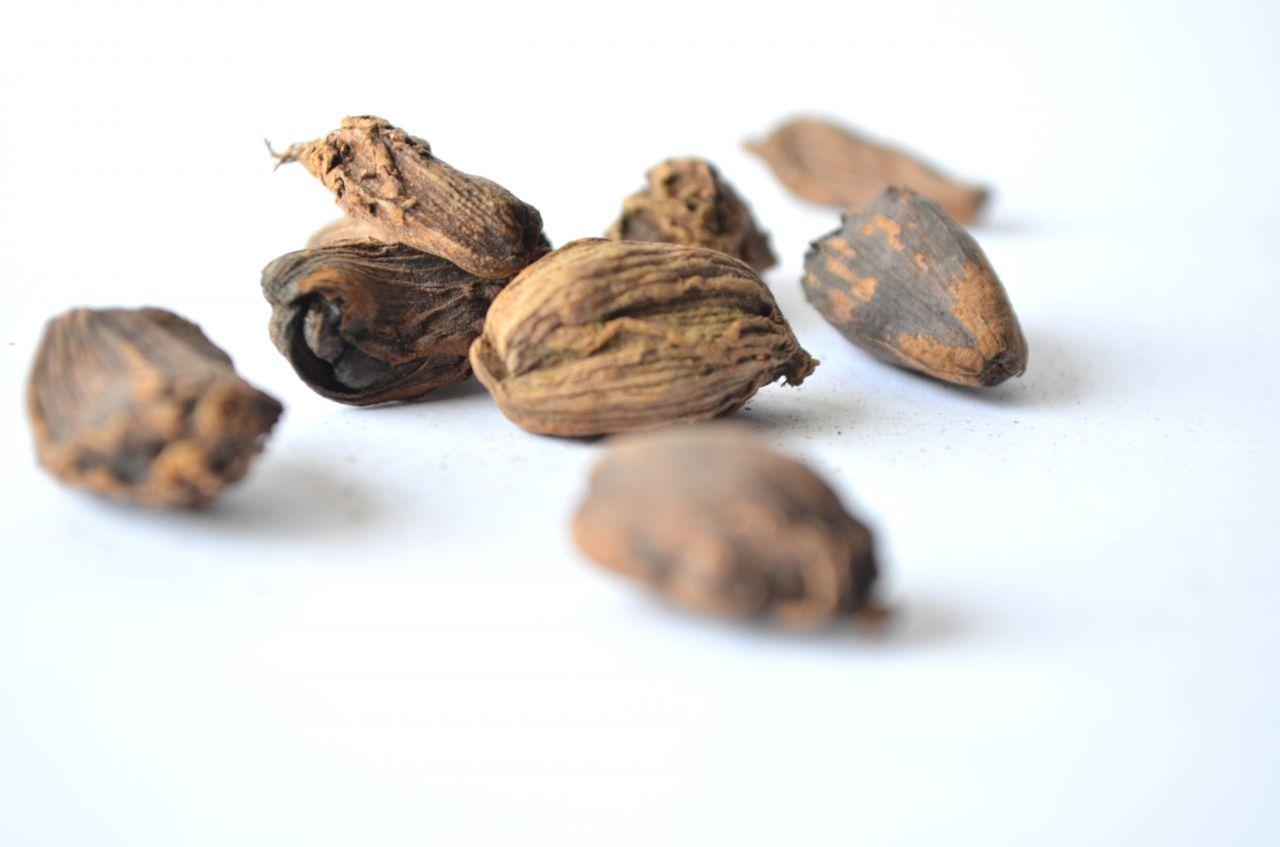 "Free photo ""Nutmeg Spices"""