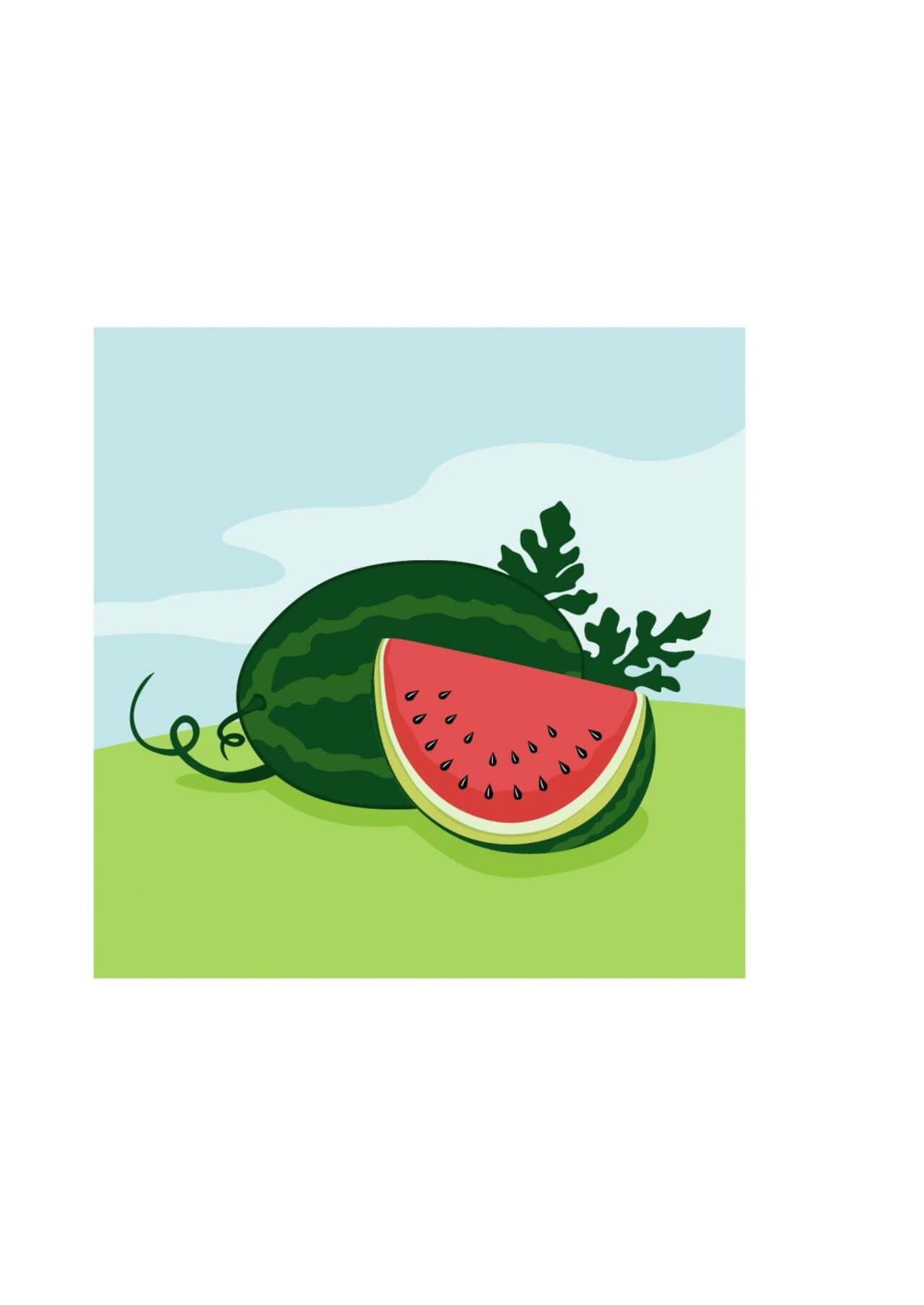 "Free vector ""Vector illustration of Watermelon"""