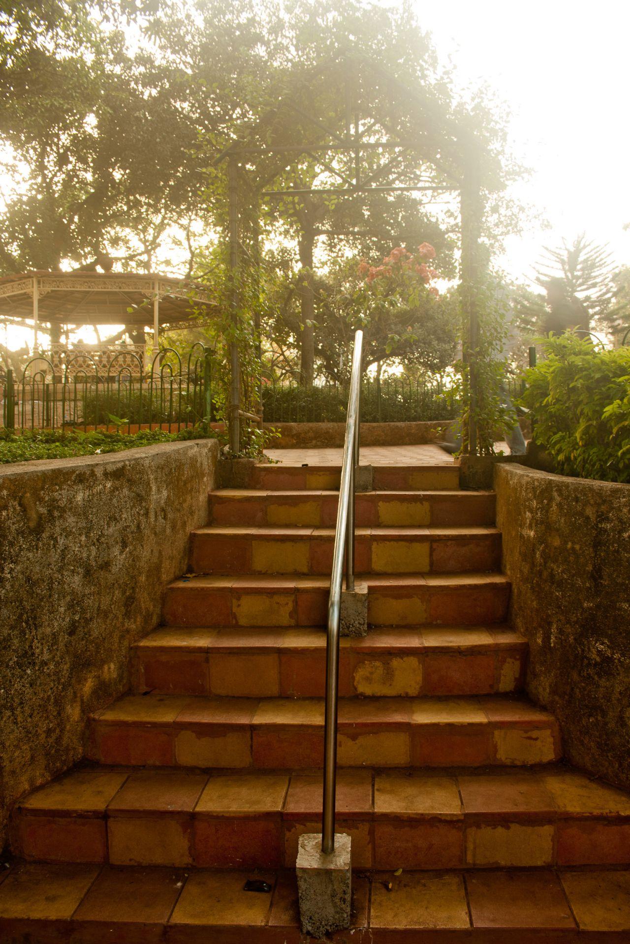 "Free photo ""Stairs In Garden"""