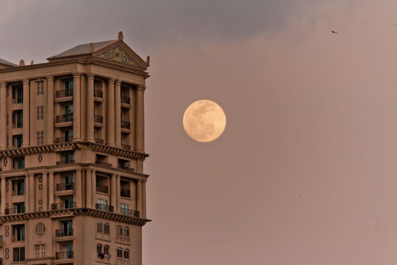 "Free photo ""Big Moon Building"""