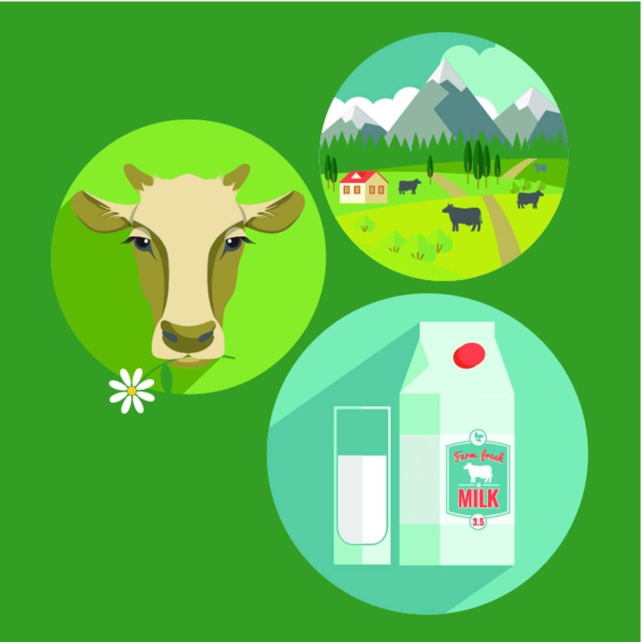 "Free vector ""Vector flat design illustration of milk. Design elements"""