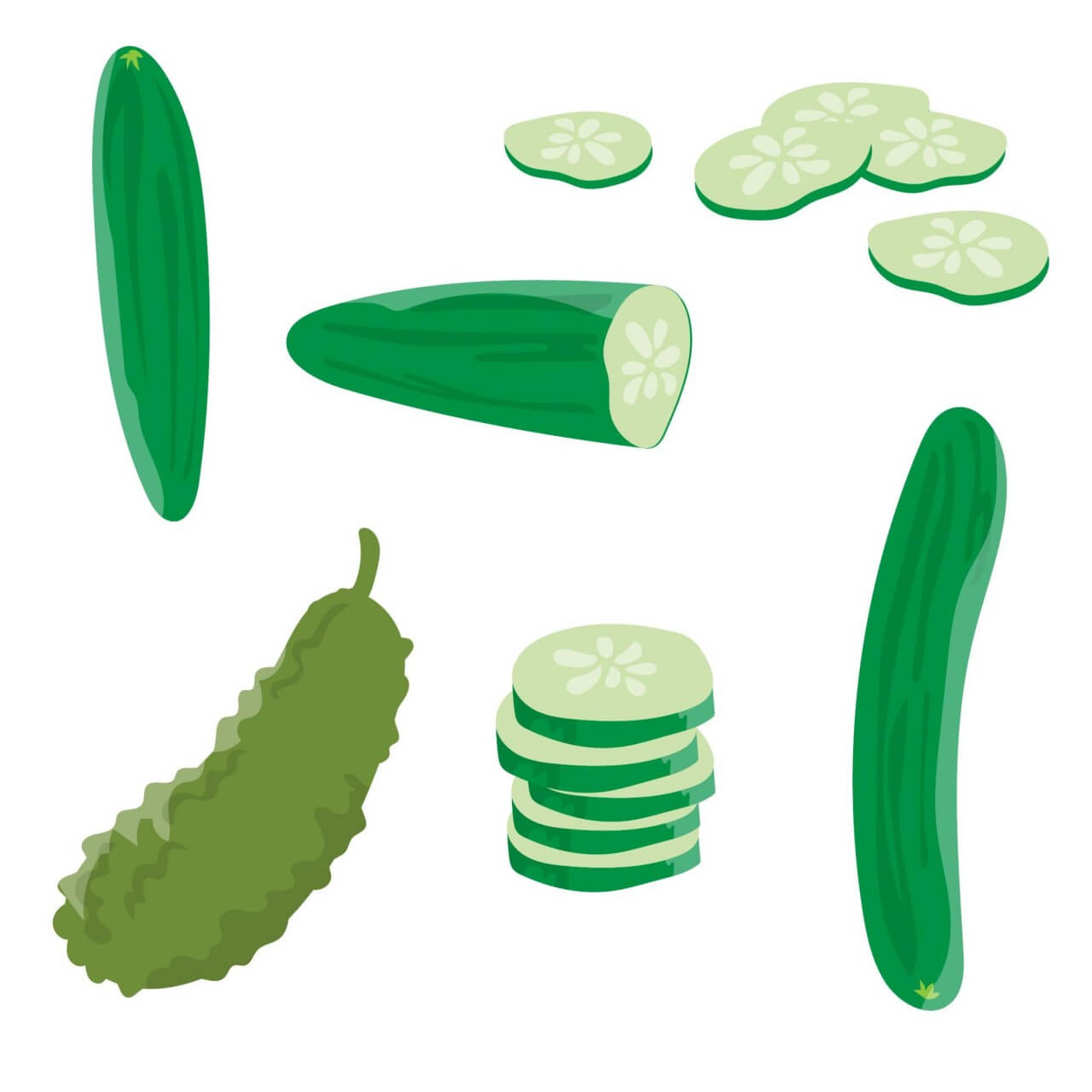 "Free vector ""Fresh Cucumber Vector"""