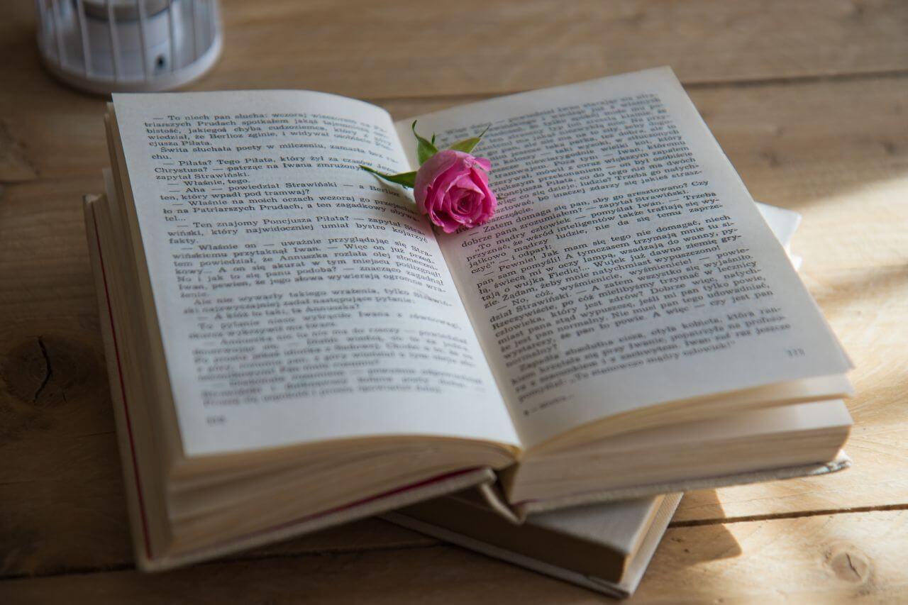 "Free photo ""Book"""