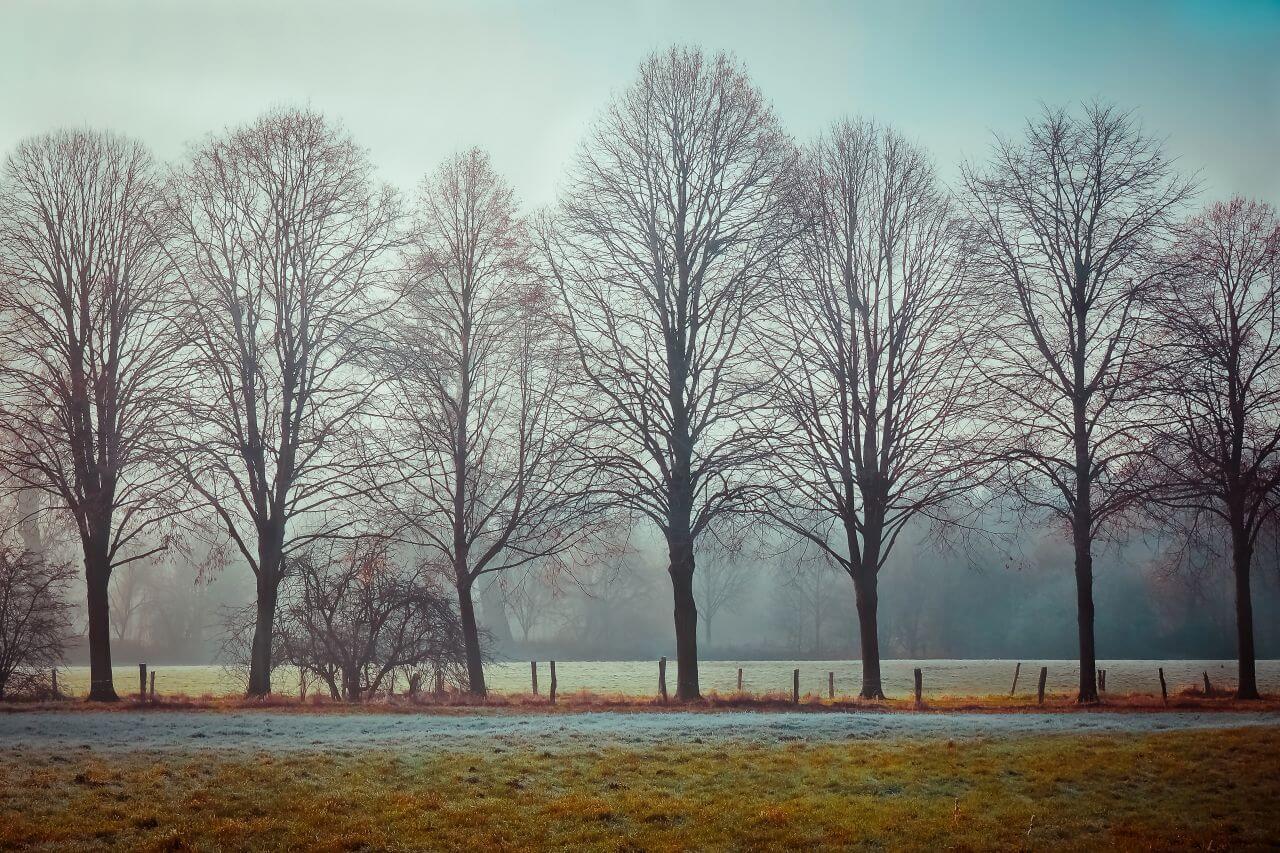 "Free photo ""Atmosphere"" by Michael Gaida"