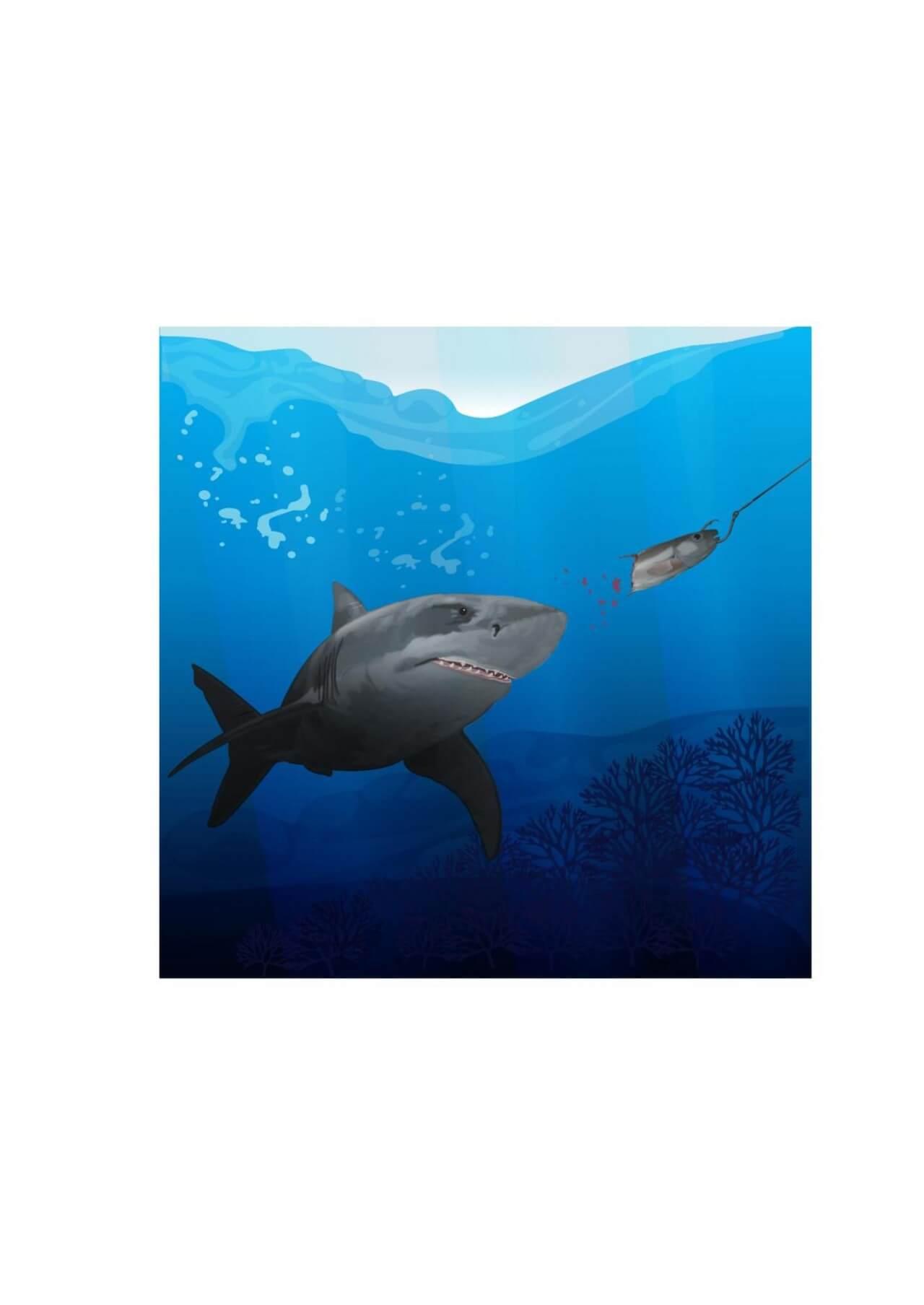 "Free vector ""Hunting shark"""
