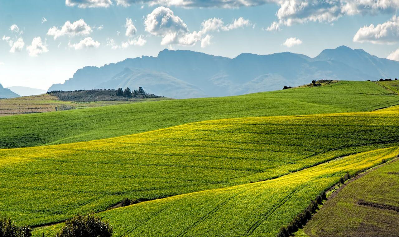 """Free photo """"Agriculture"""" by Steve Buissinne"""