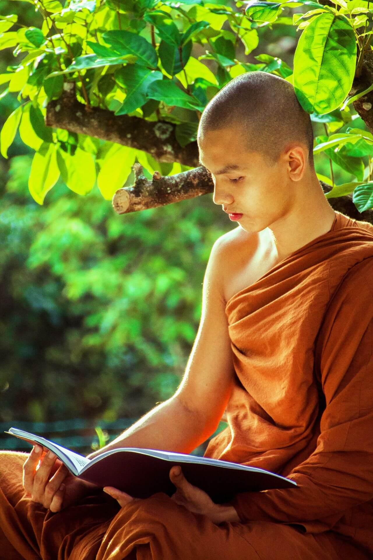 """Free photo """"Bhikkhu"""" by Malaysia"""