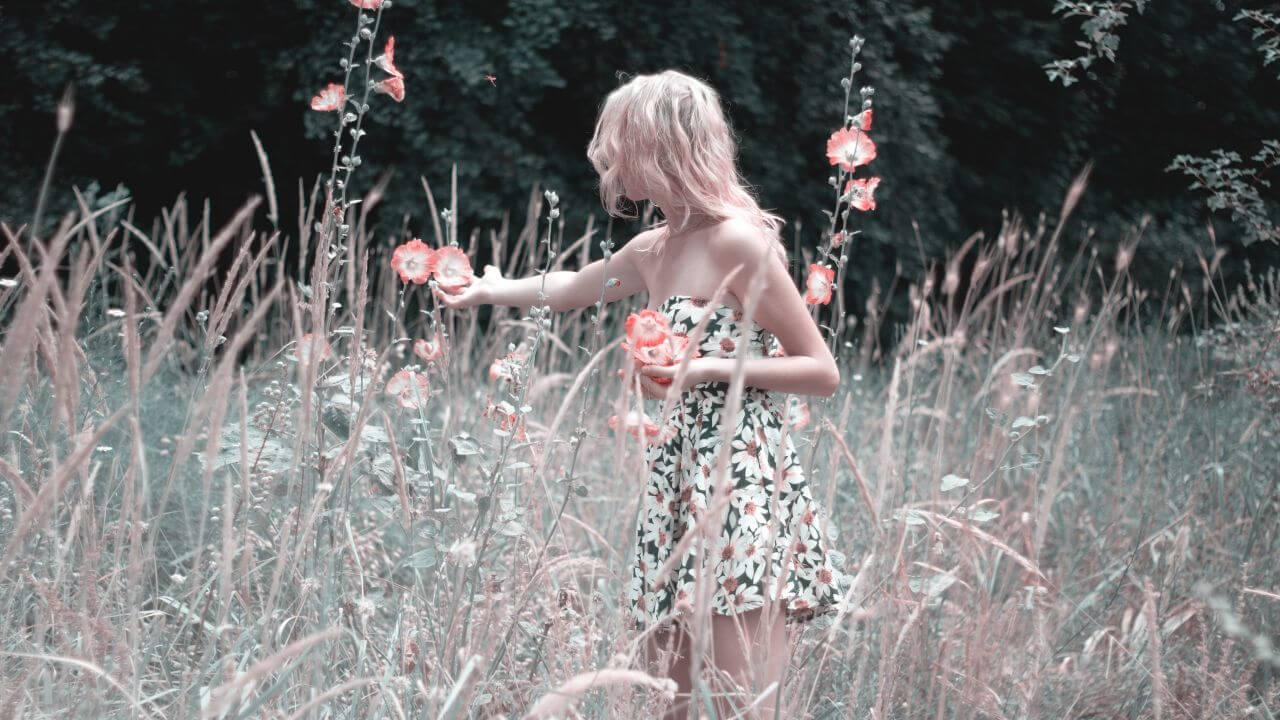 "Free photo ""Beautiful"" by Khusen Rustamov"
