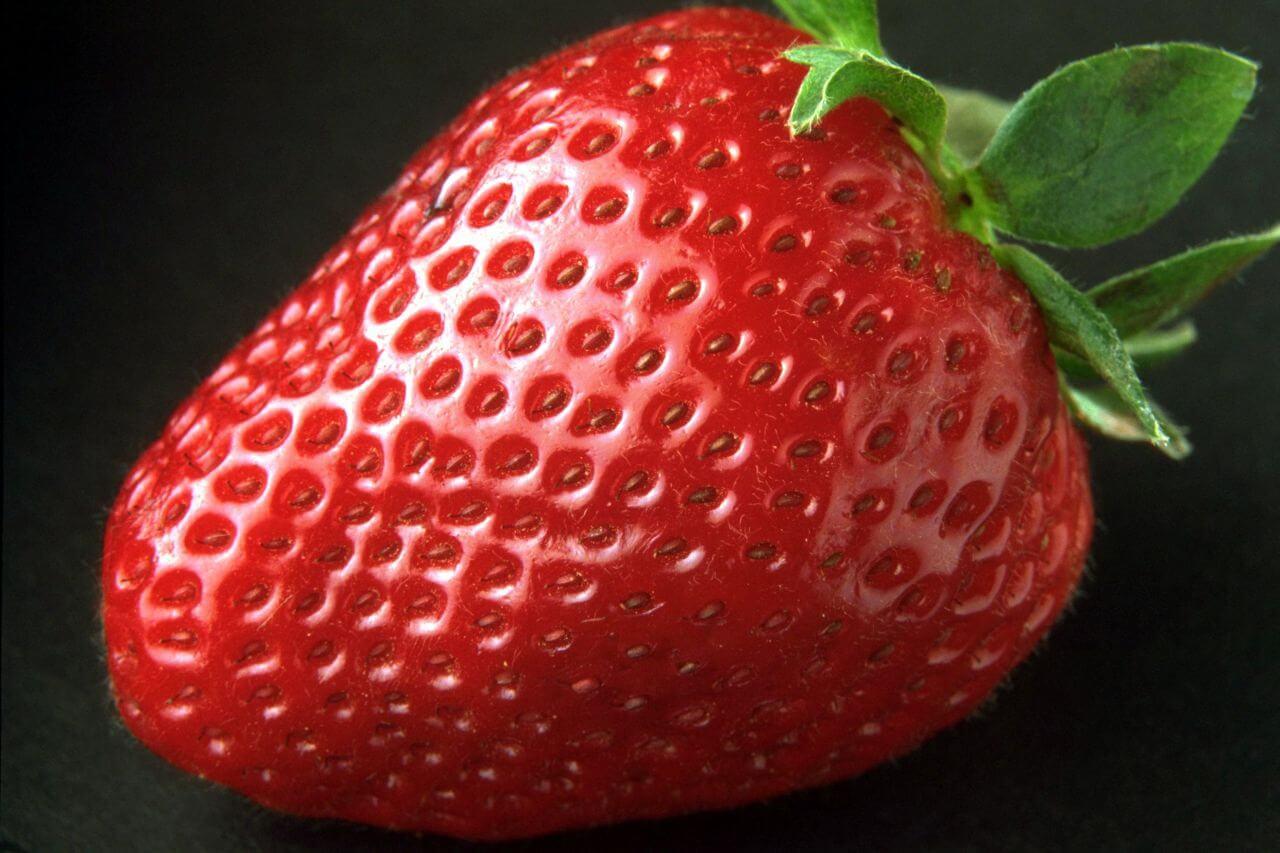 """Free photo """"Berry"""" by Deutsch"""