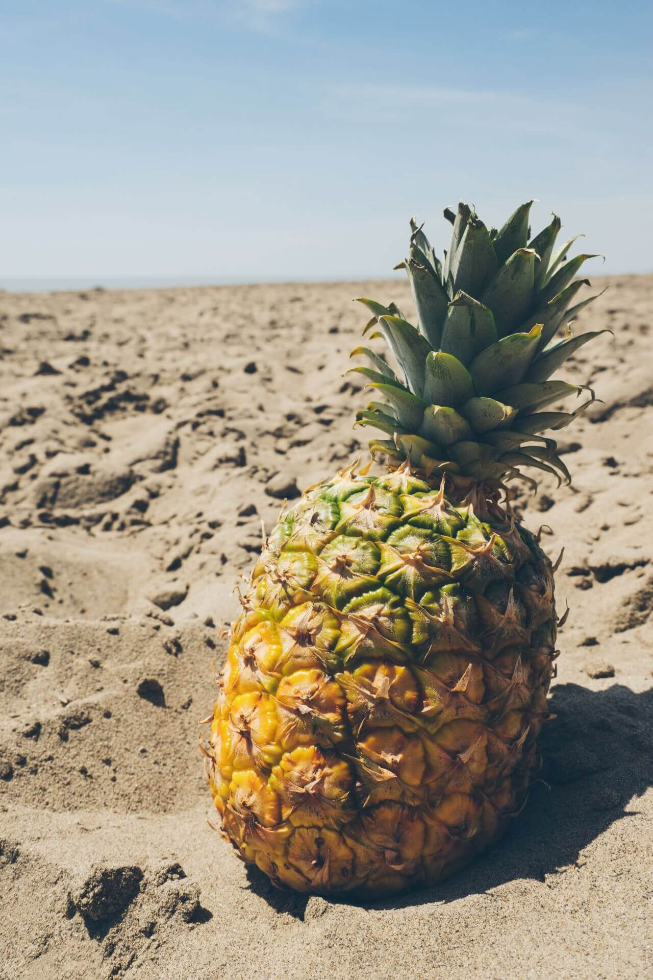 """Free photo """"Arid"""" by  Pineapple Supply Co."""