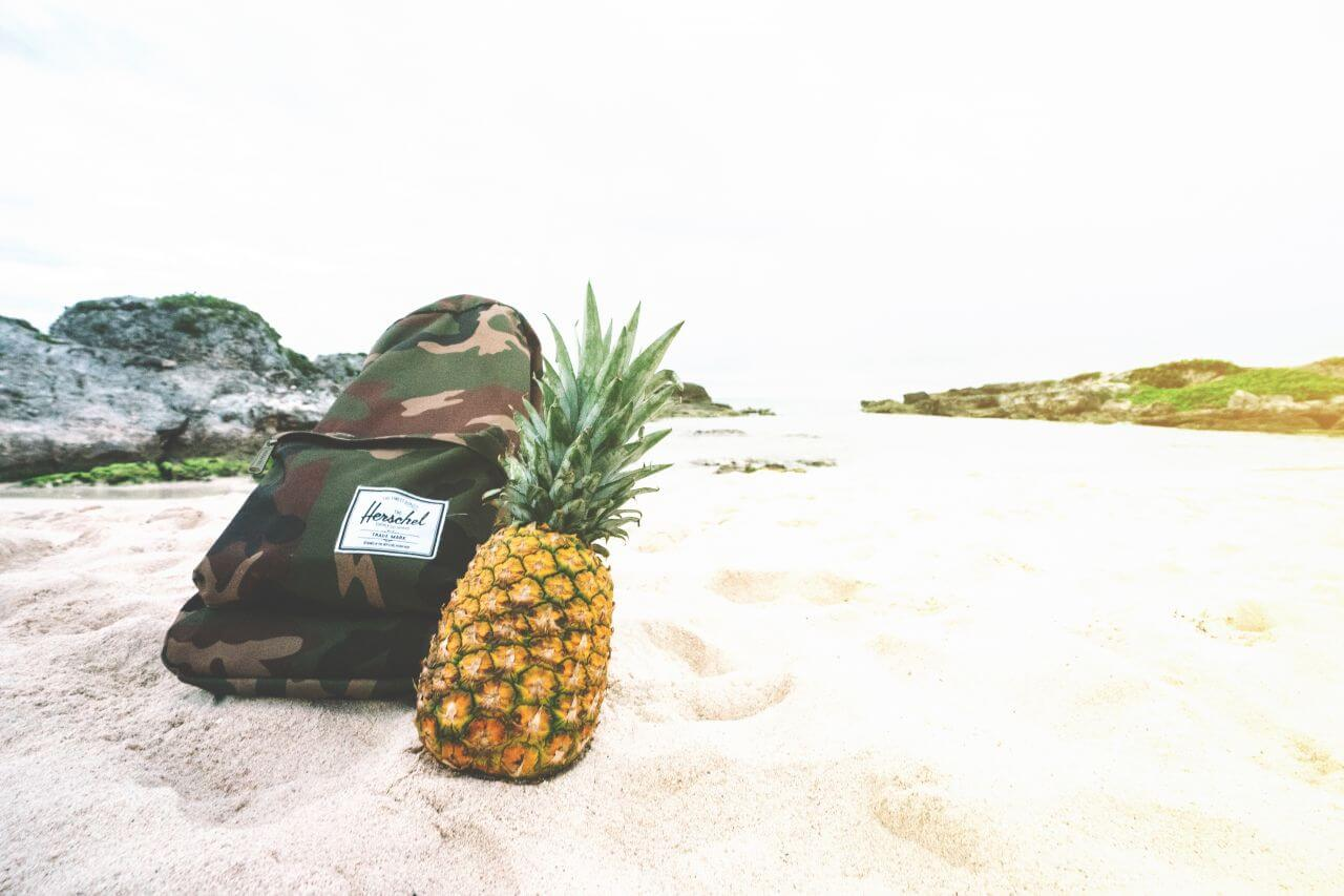"Free photo ""Backpack"" by  Pineapple Supply Co."