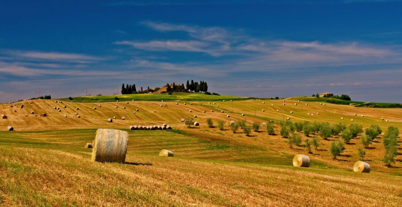 """Free photo """"Agriculture"""" by  Jahoo Clouseau"""