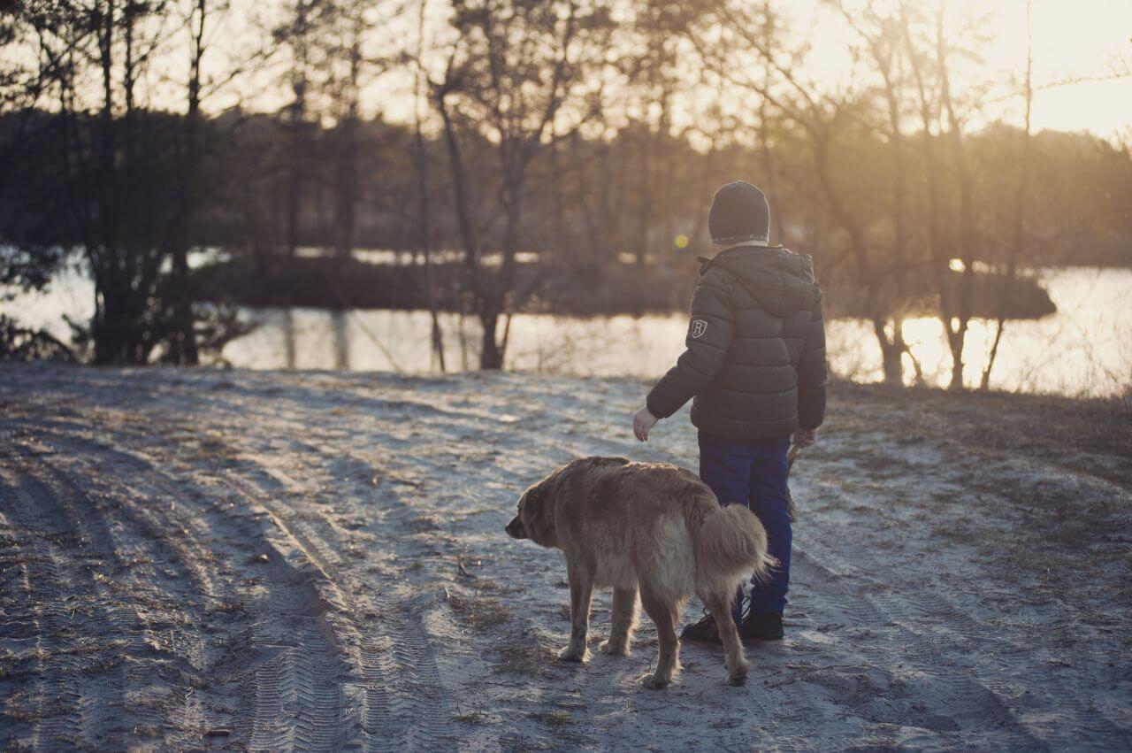 "Free photo ""Boy"" by  freestockpro.com"