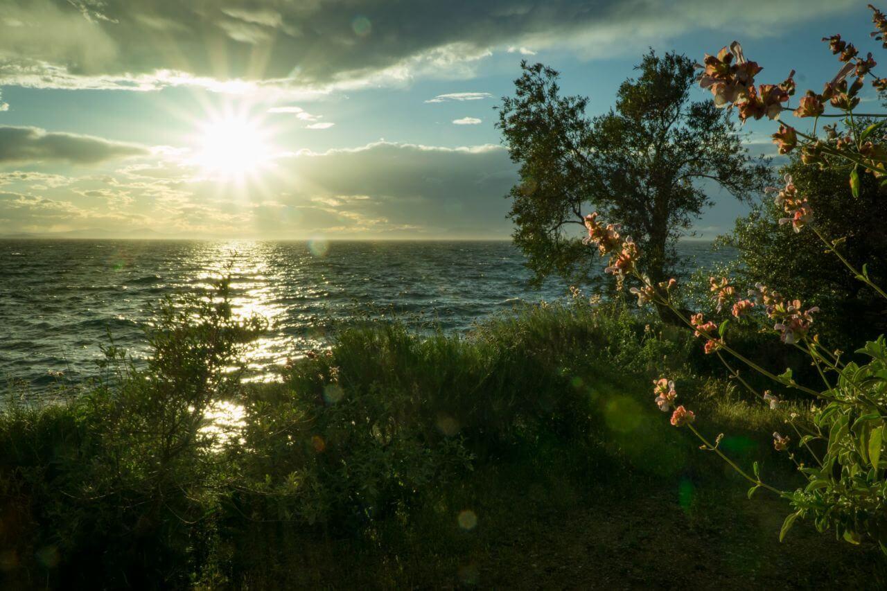 """Free photo """"Beach"""" by  mali maeder"""