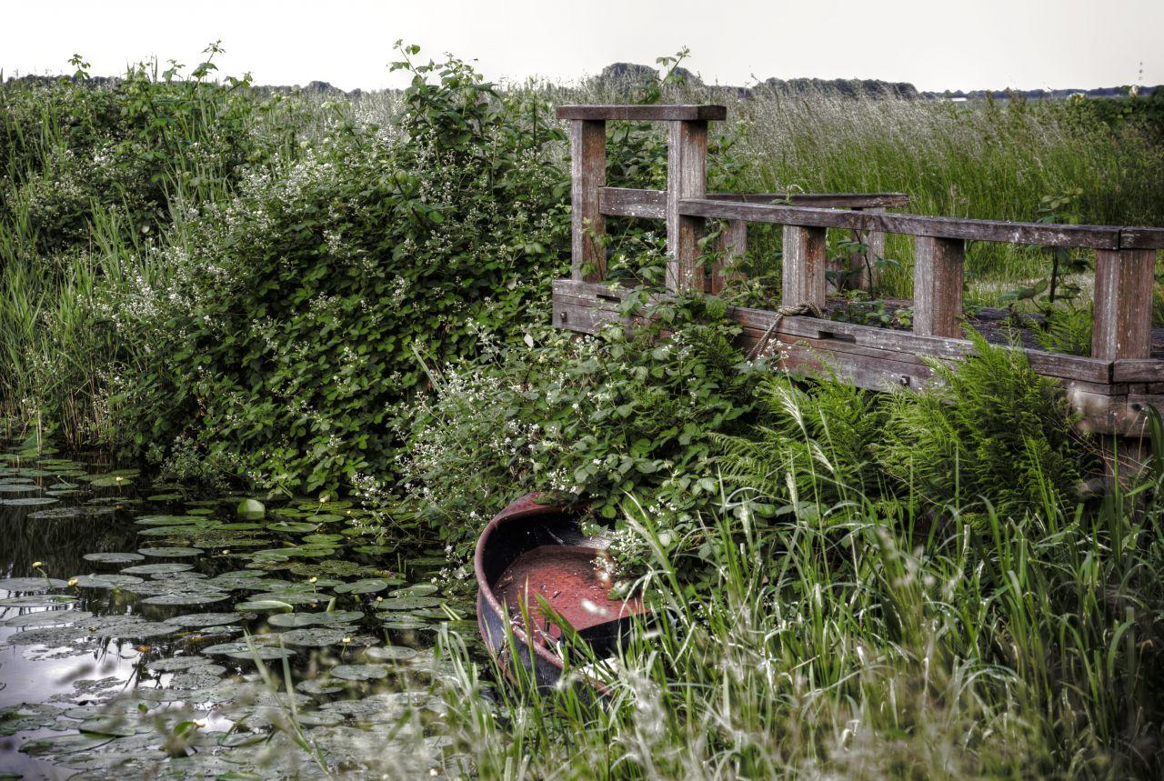 "Free photo ""Hidden boat"""