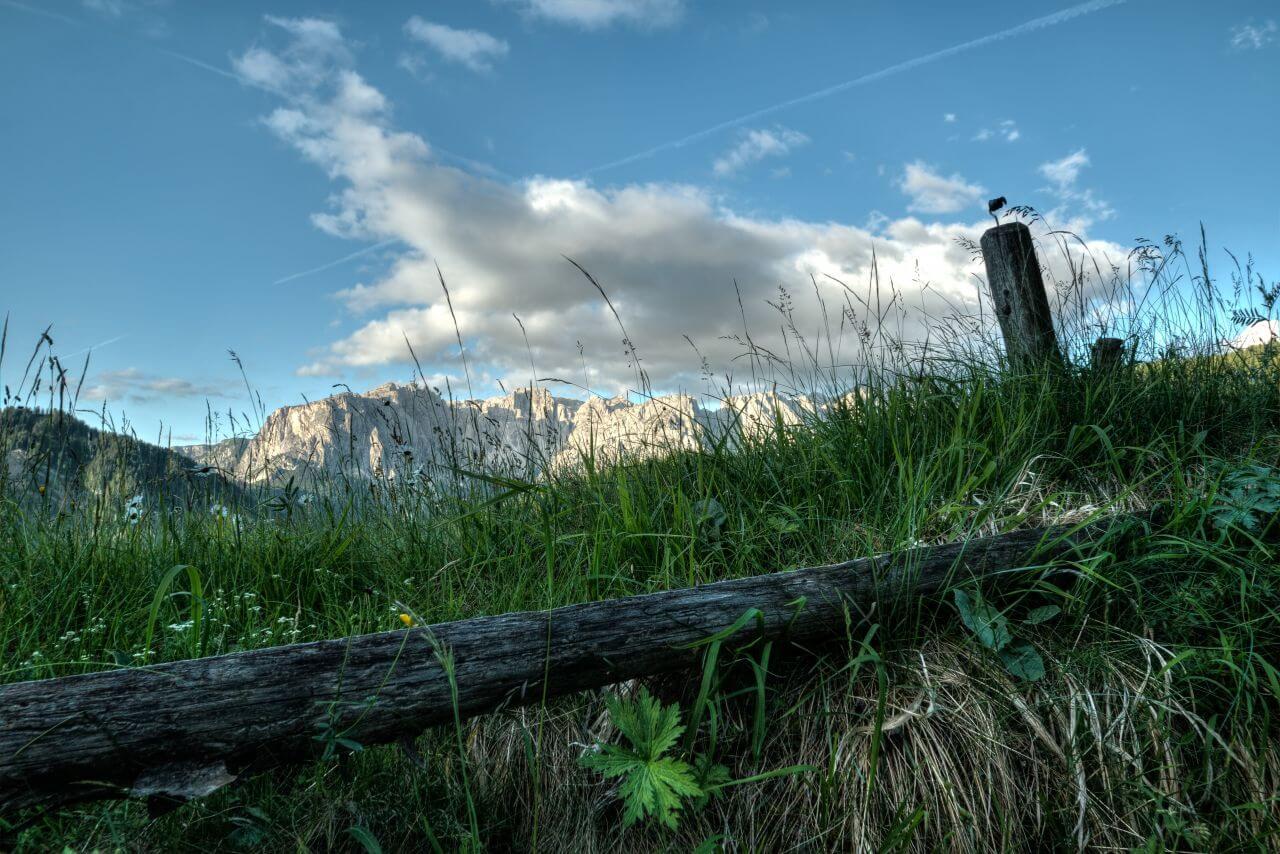 "Free photo ""Beautiful"" by  eberhard grossgasteiger"