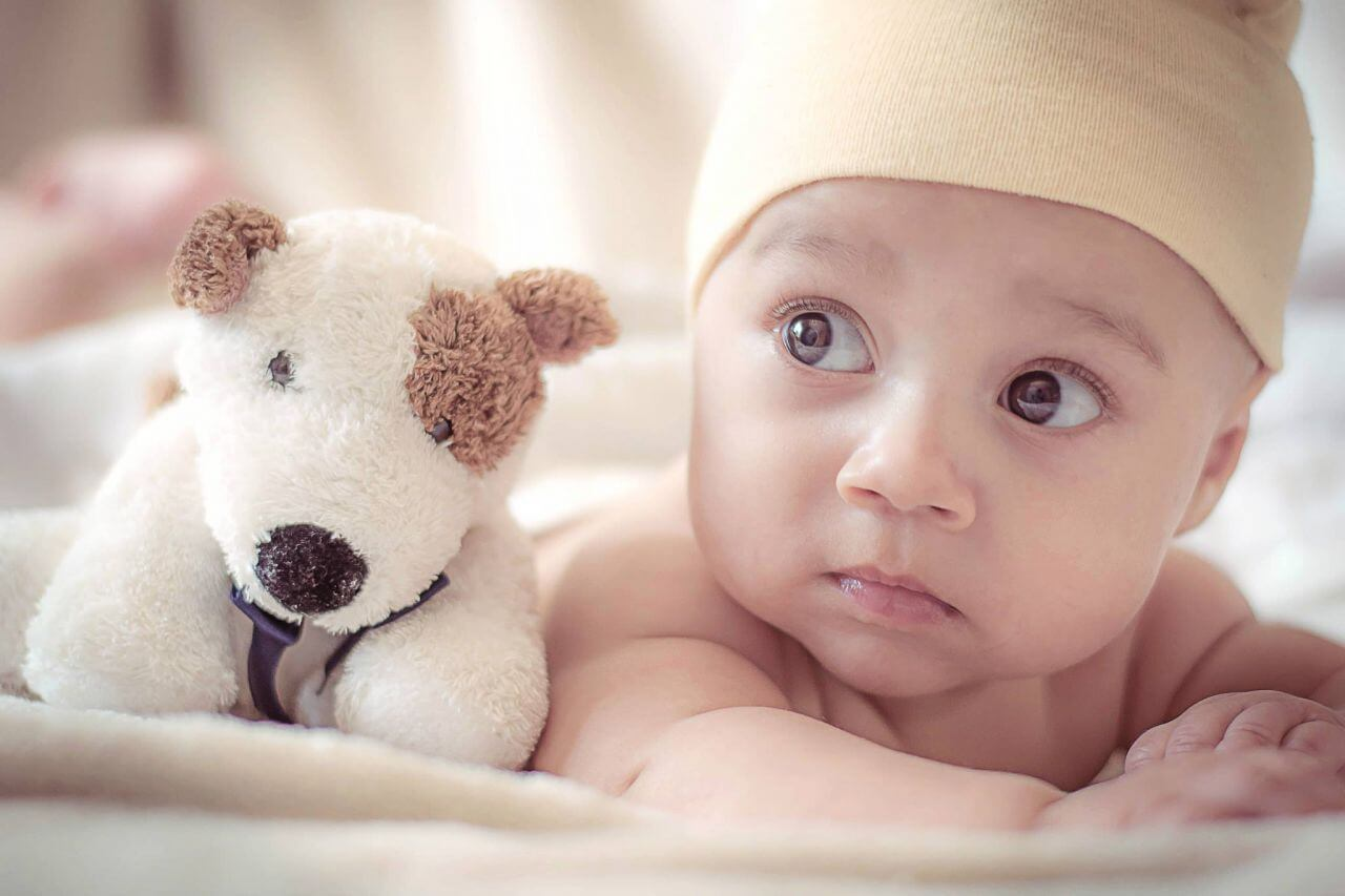"""Free photo """"Adorable"""" by  Spencer Selover"""