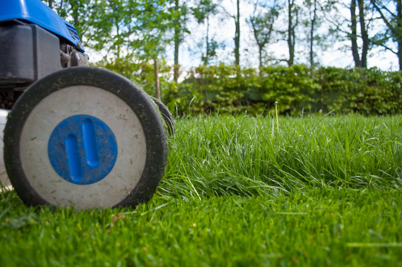 "Free photo ""Mowing the lawn"""