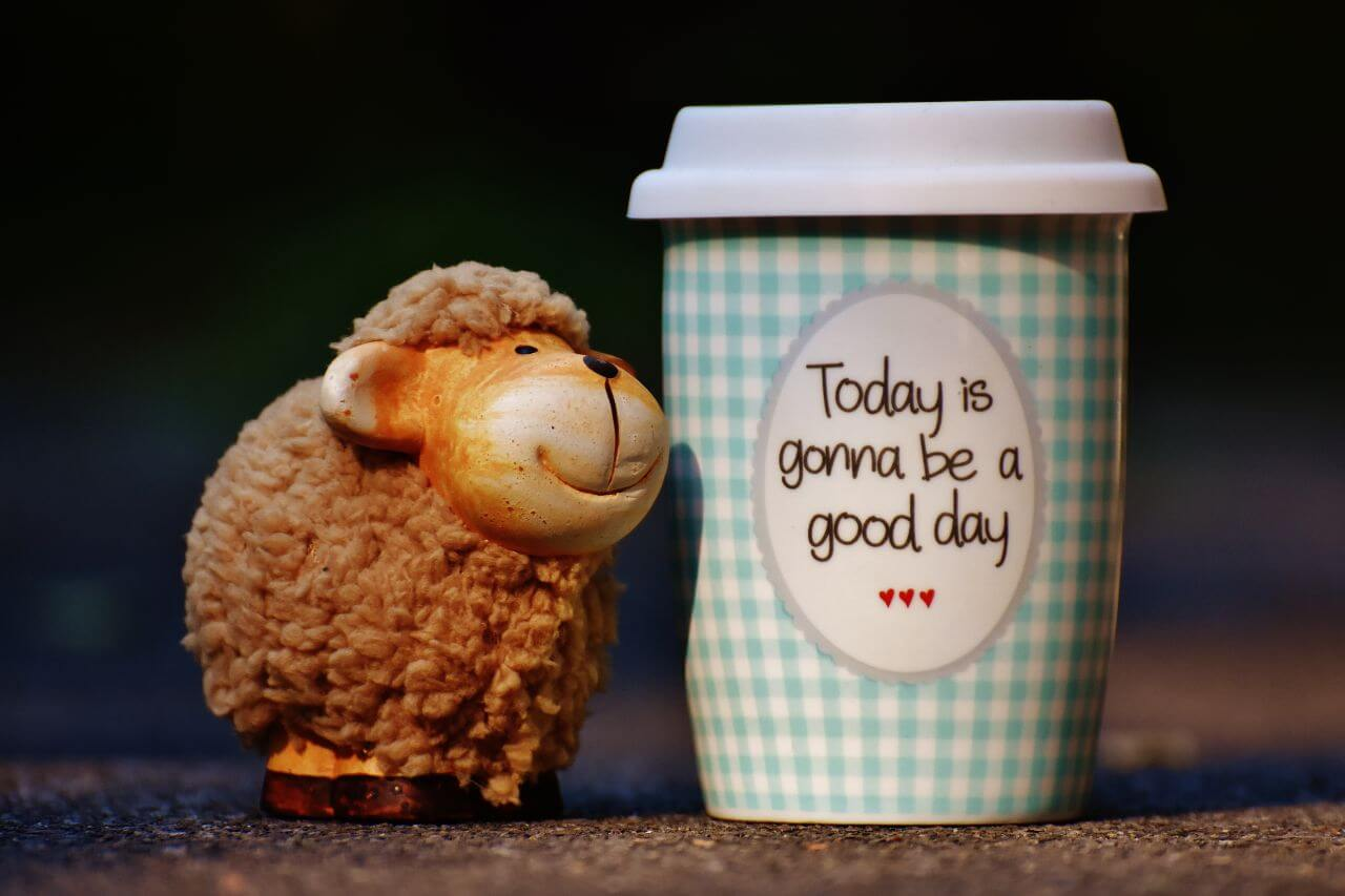 "Free photo ""Good Day Cup Sheep"" by Pixabay"