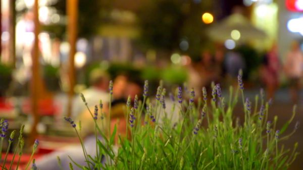 City  bokeh  abendstimmung video