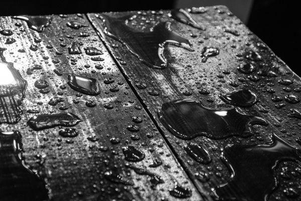 Slippery when wet photo