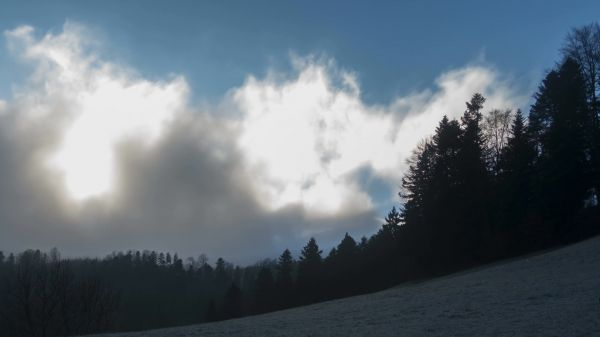 Fog  clouds  rising fog video