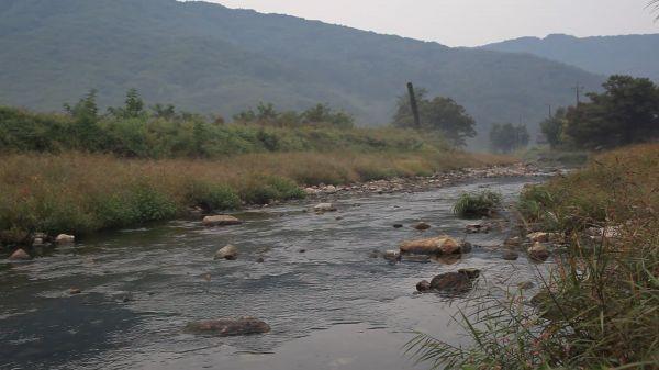 Home  creek  yearning video
