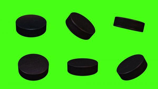 Hockey  sport  game video