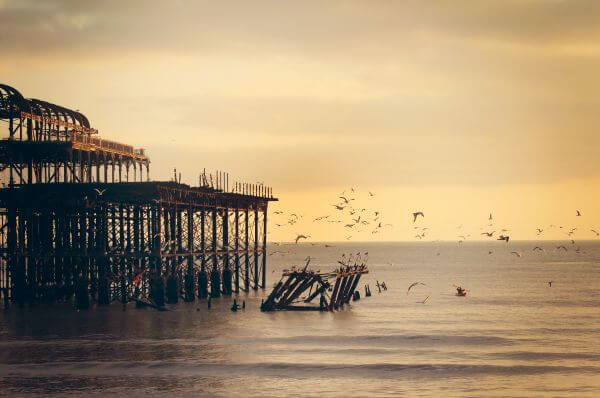 – Water Ocean Wood Pier Dock Dusk Orange Light Birds photo