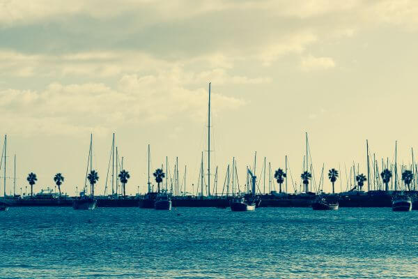 – Blue Water Ocean Sailboats Palm Trees Clouds photo