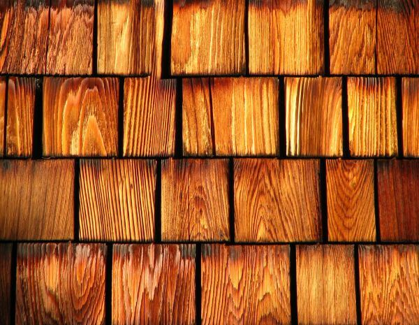 wood shingle texture 2 photo