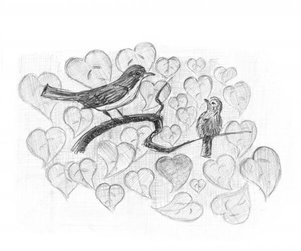 Redstart with nestling. Birds on a branch. Pencil sketch. photo