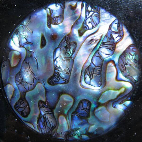 abalone pendant closeup photo