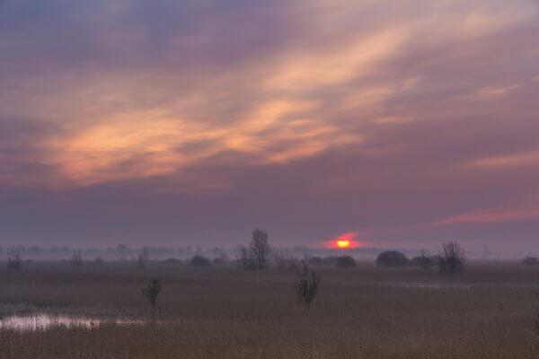 Sunrise at Lauwersmeer photo