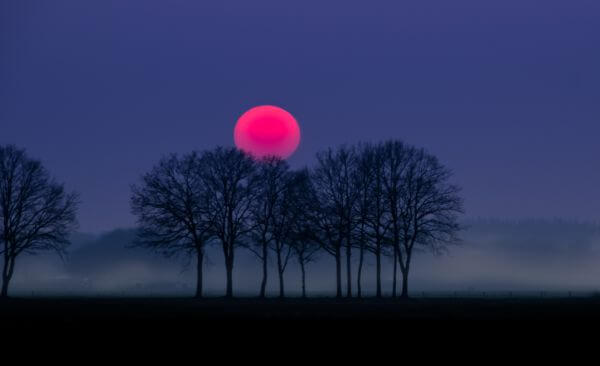 Red sun and fog photo