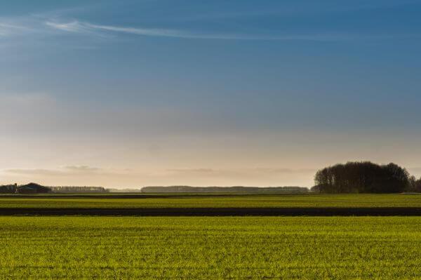Dutch landscape photo