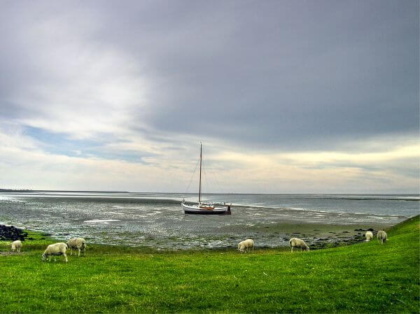 Boat at Texel island photo