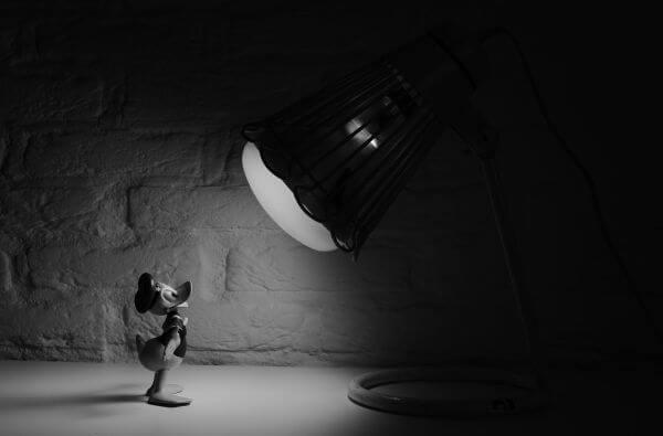 Donald Duck in the spotlight photo