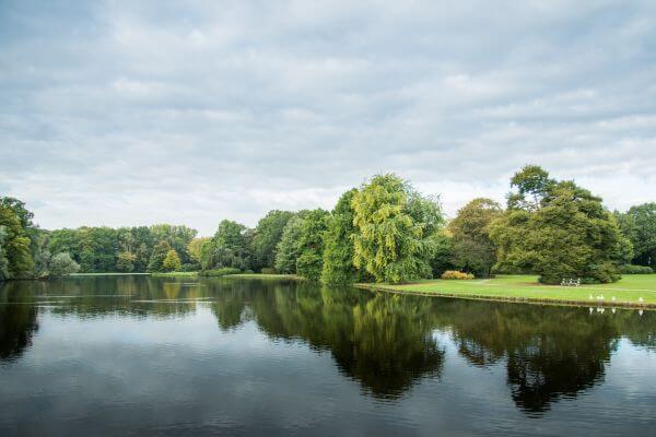 Green park, and a lake photo