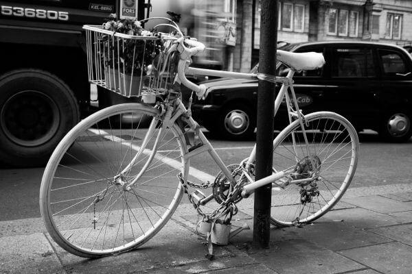 Albino bicycle photo