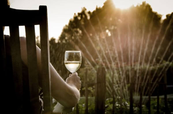 Summer evening, drinking wine photo