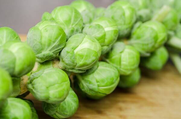 Brussels sprouts photo