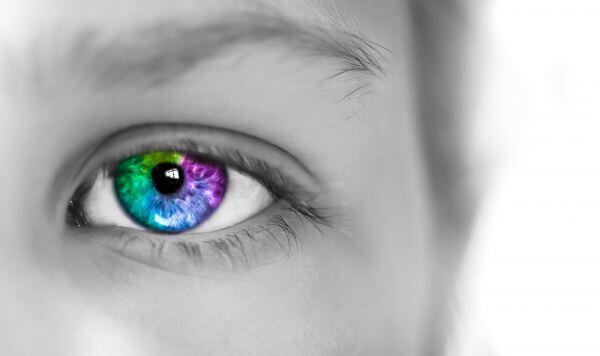 Colorful iris photo