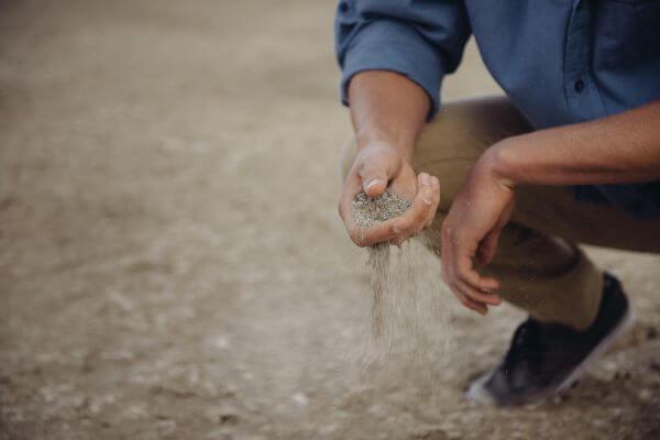 Soil photo