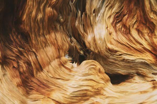 Texture photo