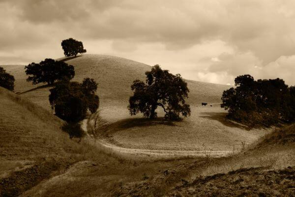 Hill photo