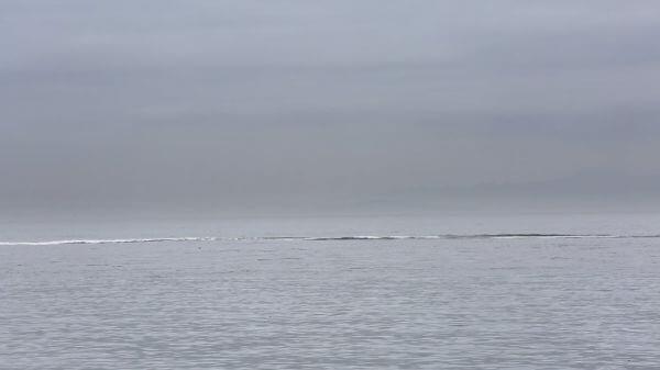 Boat In Fog video
