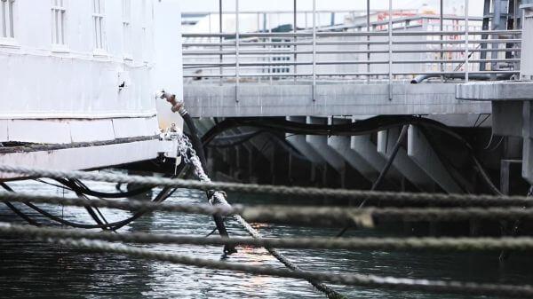 Calm Harbour video