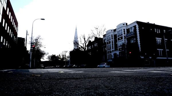 Birds @ Street Corner video