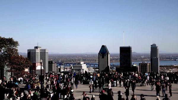 Mont Royal Downtown View video